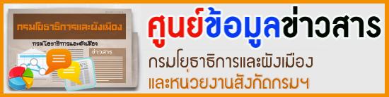 banner ann